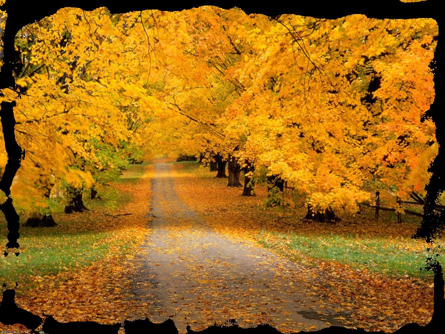 осень благодатное время для славянских праздников