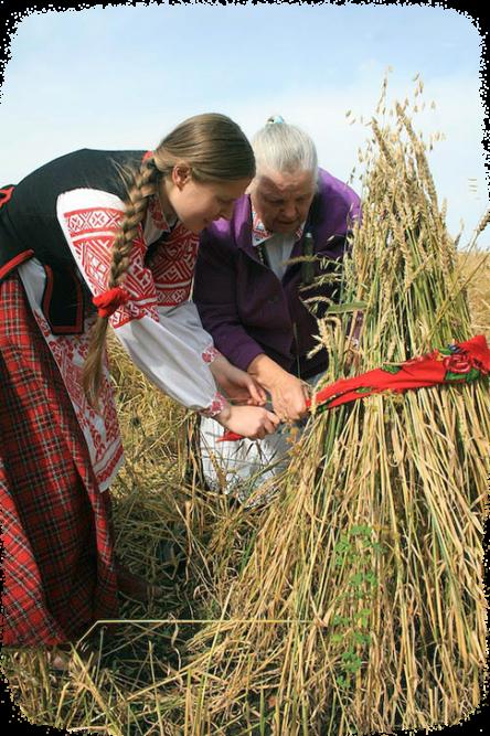 7 августа – праздник Хлебного Урожая