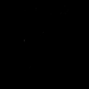 runa-krada