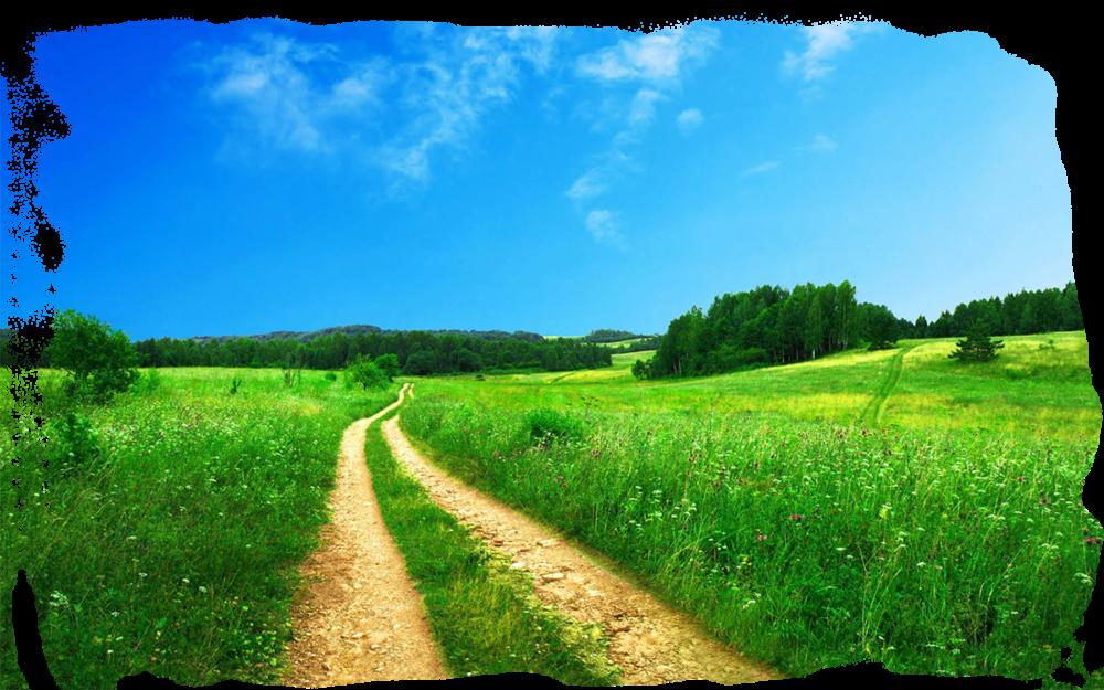лето благодатное время для славянских праздников